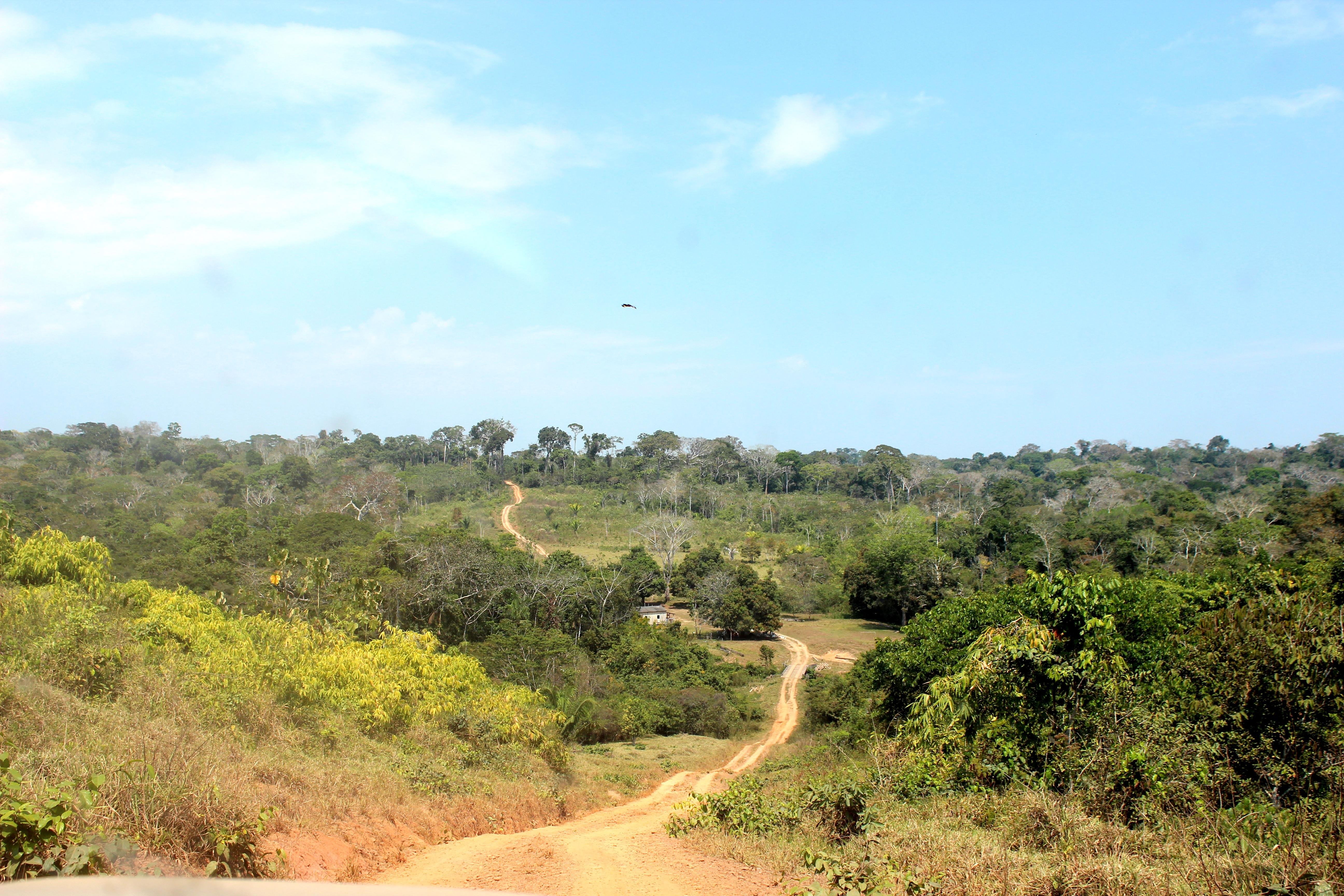 Reserva Extrativista Chico Mendes, Acre. Foto: Nanda Melonio/Flickr.