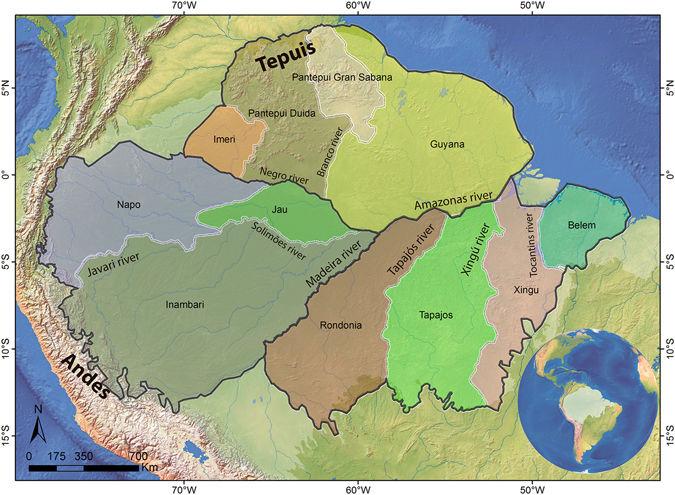 Este mapa ilustra a hipótese clássica, com os rios criando barreiras e dando origens a áreas de endemismo. Cada interflúvio teria um conjunto próprio de espécies. Crédito: Divulgação.