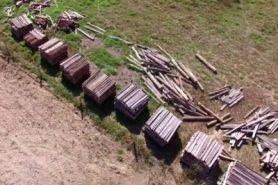 Drone filma toras em fazenda de sócio de Padilha. Foto: Divulgação.