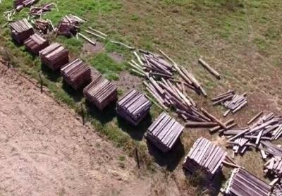 Dentro do parque: MP flagra desmatamento em fazenda ligada a Padilha