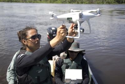 Pesquisadora do Instituto Mamirauá, Daiane da Rosa, faz o lançamento de drone. Foto: Everson Tavares/Divulgação.