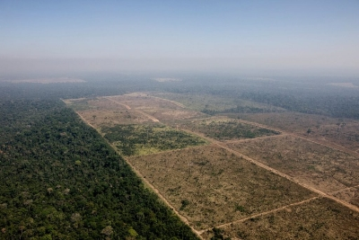 Área desmatada por fogo na Floresta Nacional do Jamanxim, para uso em agropecuária. Unidade sobre com grilagem de terras. Foto: Daniel Beltra/Greenpeace.