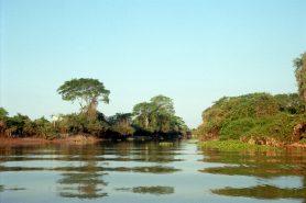 A RPPN Sesc Pantanal. Foto: Lu/Flickr.