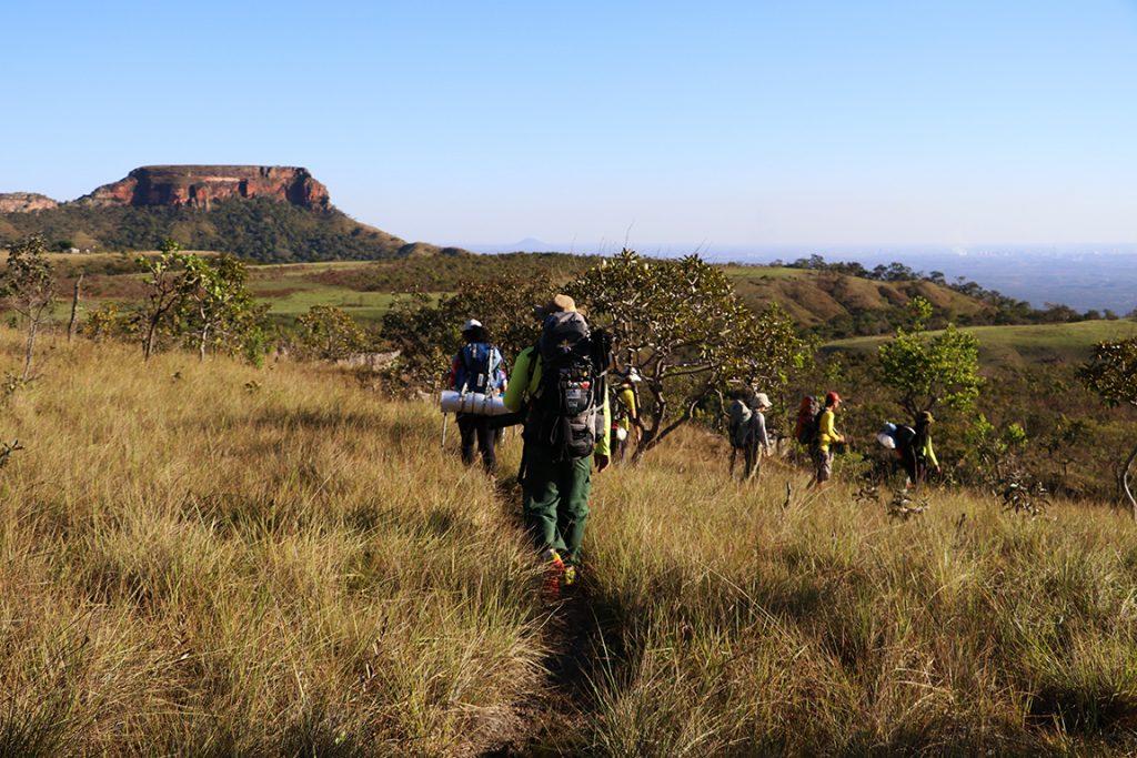O grupo caminha por entre a vegetação típica do Cerrado. Foto: Duda Menegassi.