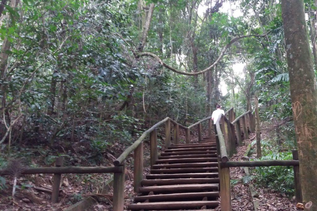 Parque Estadual de Jaraguá. Foto: Karina Miotto.