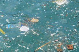 Plástico e bolinhas natalinas se espalharam perto do saco do funil. Foto: Fiscalização/ICMBio.