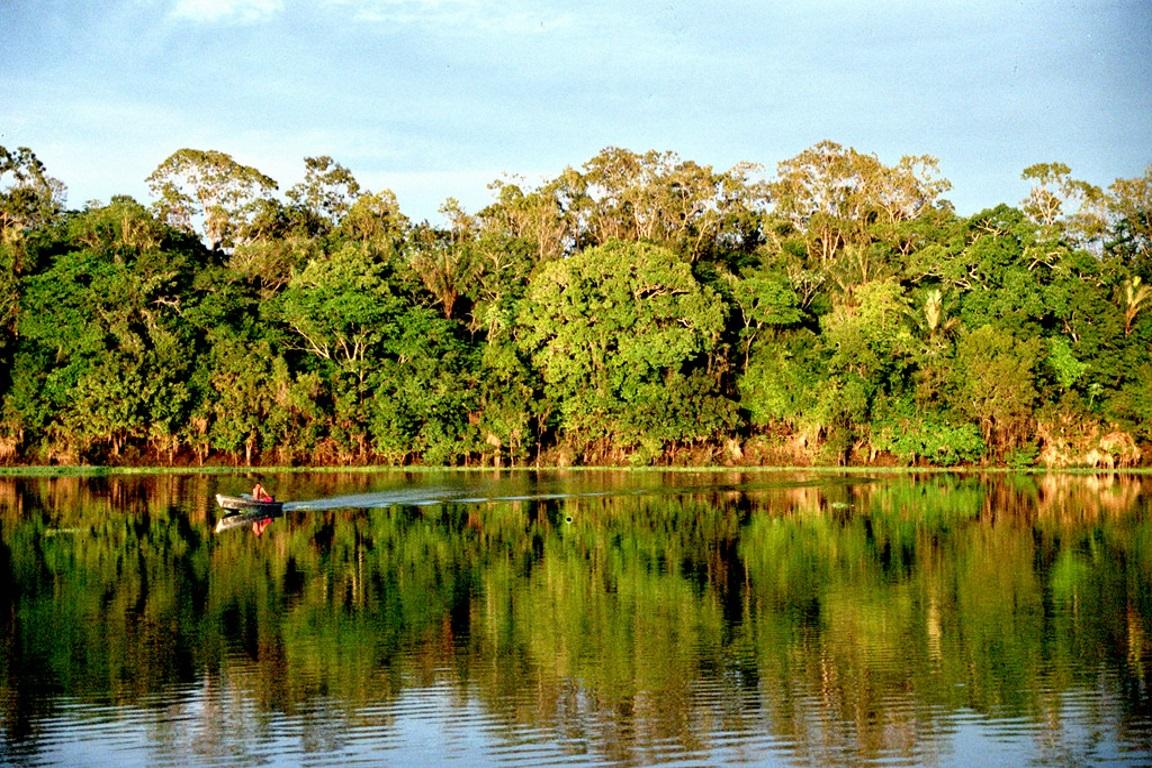 Das 388 áreas protegidas, 112 estão classificados como risco alto ou muito alto. Foto: Andre Deak/Flickr.