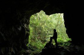 Caverna de Cercado, na APA da Escarpa, em Palmeira. Foto: GUPE.