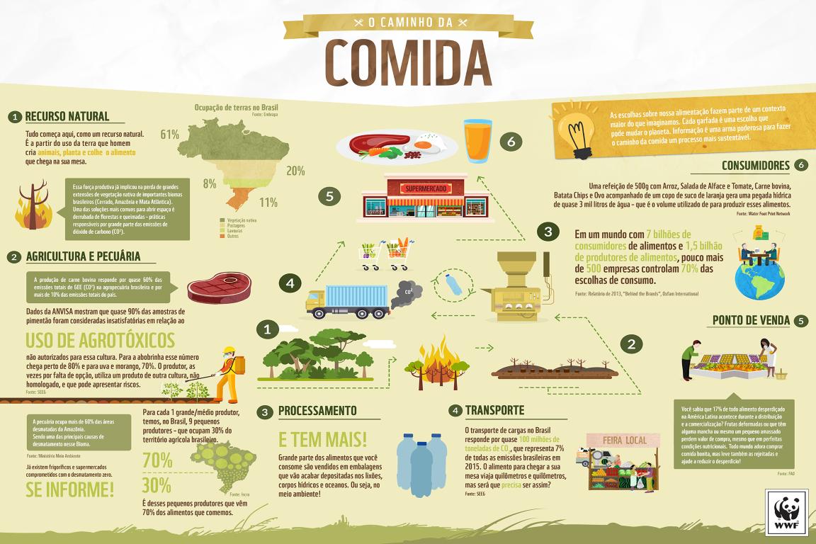 """Infográfico """"Caminho da Comida"""". Foto: WWF-Brasil/Divulgação."""