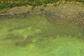 Vista aérea da poluição da Lagoa de Jacarepaguá, onde será realizada a queima de fogos do Rock in Rio. Foto: Diego Baravelli/wikimedia.