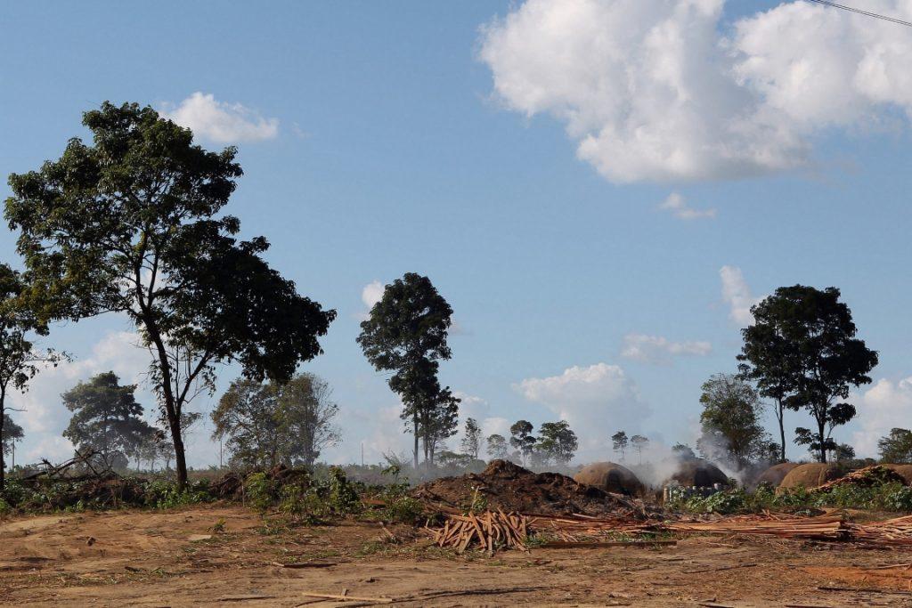 Operação Hymenae realizada pelo Ibama em Julho de 2016. A ação visou combater grupo criminoso responsável por extrair e comercializar madeira na Reserva Biológica do Gurupi e das terras indígenas Caru e Alto Turiaçu, no Maranhão. Foto: Felipe Werneck/Ibama.