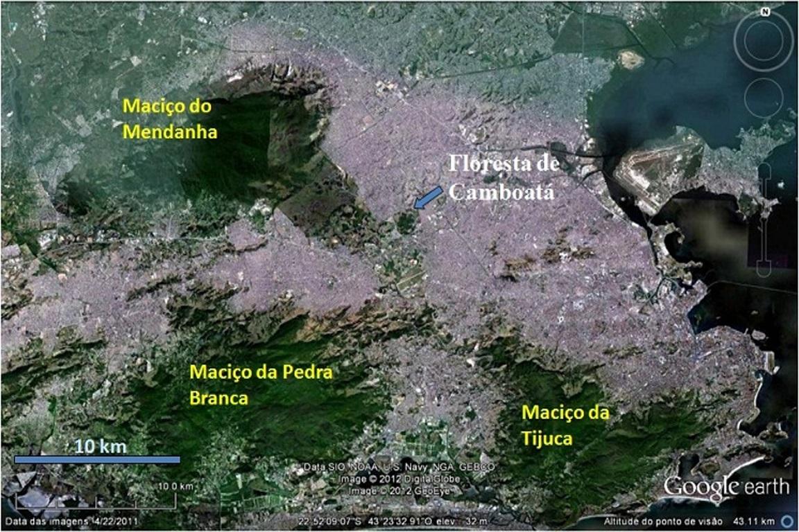 Vista ortogonal da área da Floresta de Camboatá, com Avenida Brasil ao sul_Acervo Rogerio Gribel