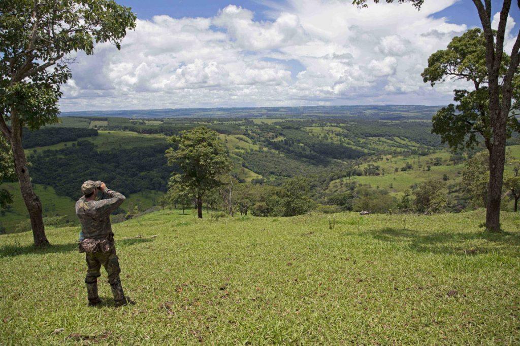 Áreas fragmentadas do Triângulo Mineiro. Foto: Divulgação.