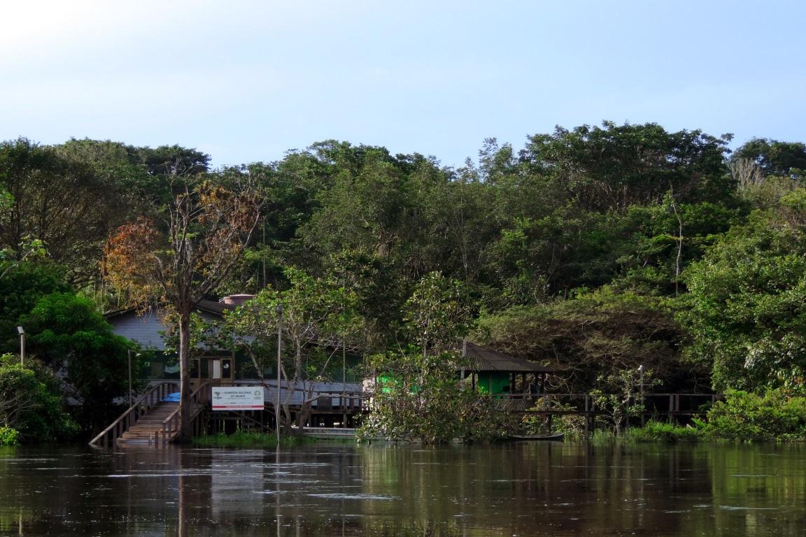 Segundo liminar do juiz federal do Amapá, Anselmo Gonçalves da Silva, a Renca encontra-se encravada em região de inúmeras áreas legalmente protegidas como a Floresta Nacional do Amapá. Foto: Sherlem Patrícia/Wikiparques.