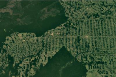 Desmatamento em Rondônia. Imagem: Google Earth.