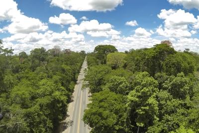 Tem uma estrada no meio do caminho da Reserva Biológica de Sooretema. Foto: Leonardo Merçon.