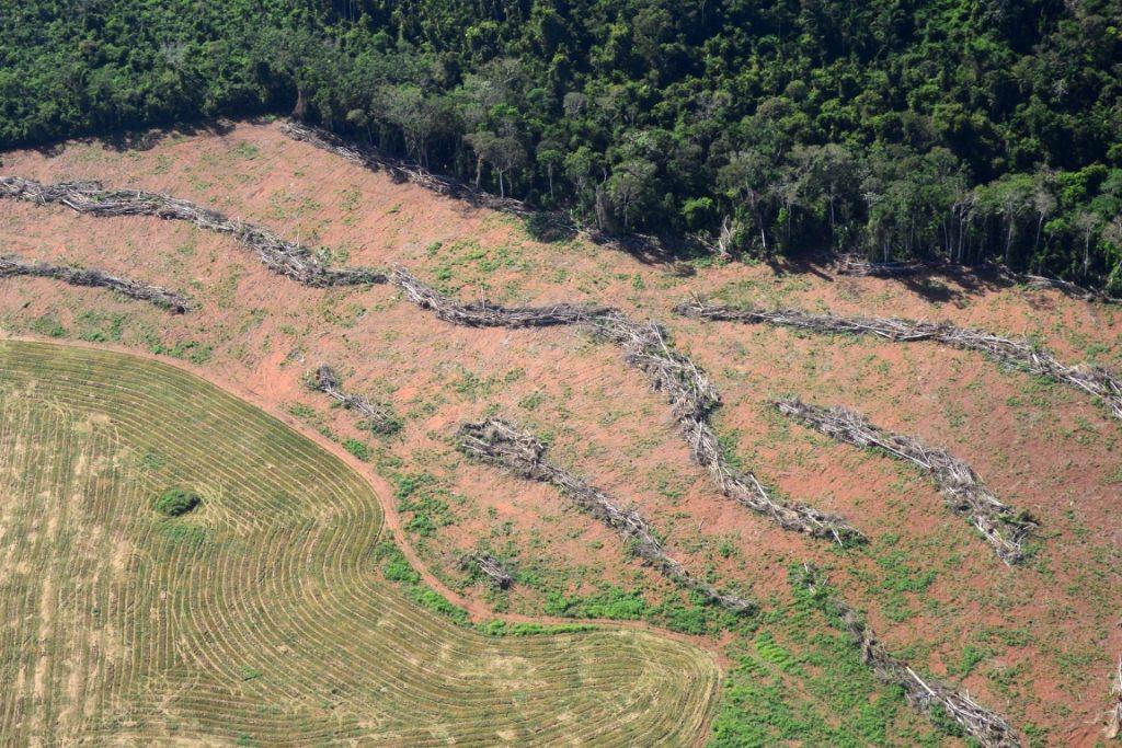 Área desmatada em Novo Progresso, PArá. Foto: Vinícius Mendonça - Ascom/Ibama.