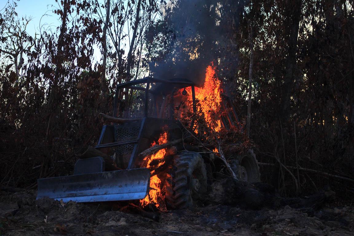 Operação sem fim: ICMBio contra o crime ambiental na BR-163