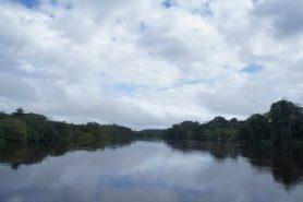 Corredor ecológico uniria 309 áreas protegidas (957.649 km2) e 1.199 terras indígenas (1.223.997 km2). Foto: Cortesia Iepé.