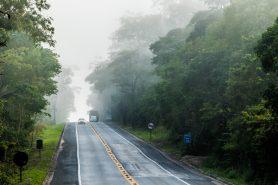 A rodovia BR-101 recorta a Reserva Biológica de Sooretama e é a principal ameaça à fauna silvestre da região. Foto: Frederico Pereira.