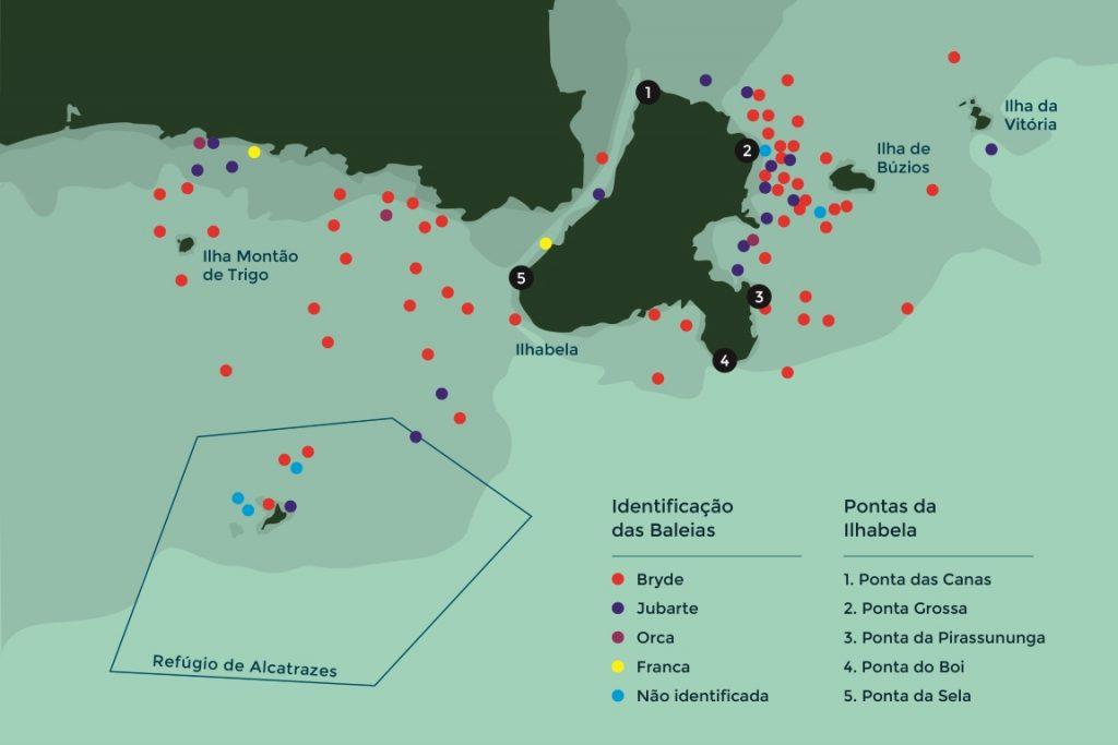 Mapa de avistamento de baleia. Imagem: Projeto Baleia à Vista.