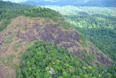 Parque Nacional Montanhas do Tumucumaque, no Amapá, está no traçado do corredor. Foto: Cortesia Iepé.