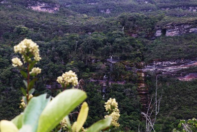 Paredão rochoso no Vale do Serrano, de onde brotam cachoeiras. Foto: Duda Menegassi.