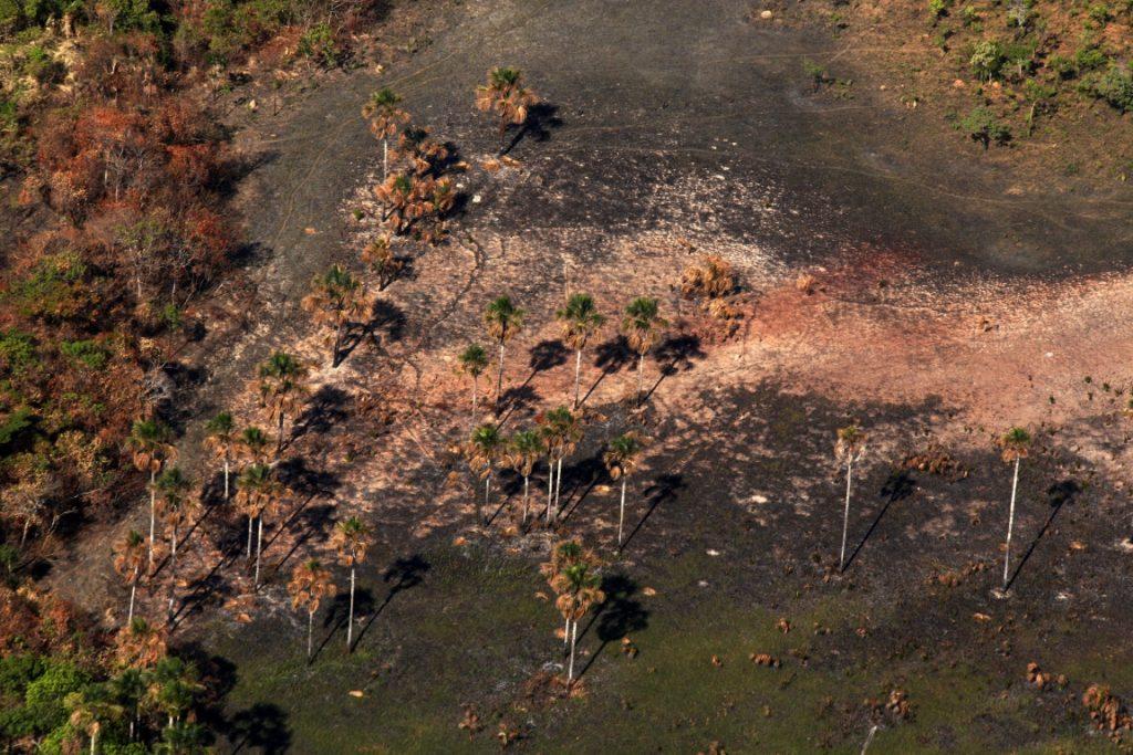Imagem mostra rastro das chamas agora apagadas no Parque Nacional da Chapada dos Veadeiros. Foto: Paulo de Araújo/MMA.