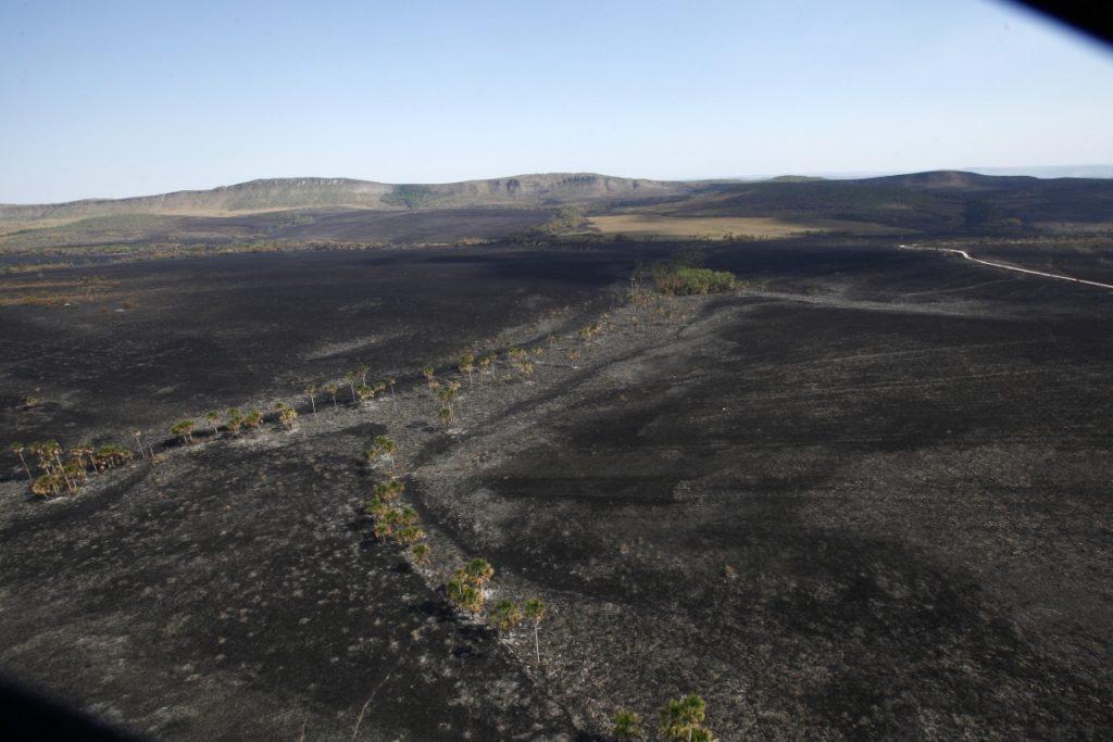 A presença de ventos fortes, baixa umidade do ar, altas temperaturas e estiagem prolongada contribuíram para o avanço do fogo no Cerrado. Foto: Paulo de Araújo/MMA.