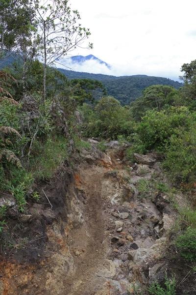 A erosão intensa transformou a trilha em uma vala. Foto: Duda Menegassi.