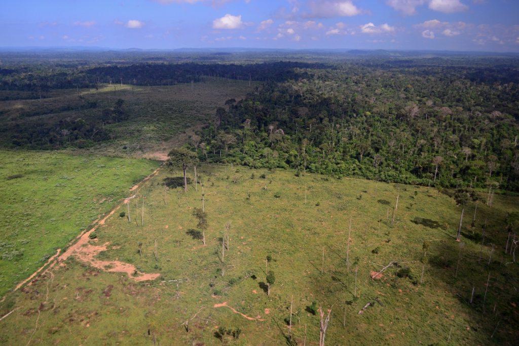 Sobrevoo aponta os limites entre a floresta e as pastagens em Novo Progresso, Pará. Foto: Vinícius Mendonça - Ascom/Ibama.