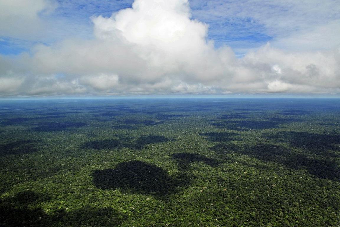 Ministro do Meio Ambiente, Sarney Filho, assinou contrato que destinará mais de 60 milhões de dólares que serão investidos em ações de sustentabilidade na Amazônia Legal. Foto: Neil Palmer/Wikicommons.