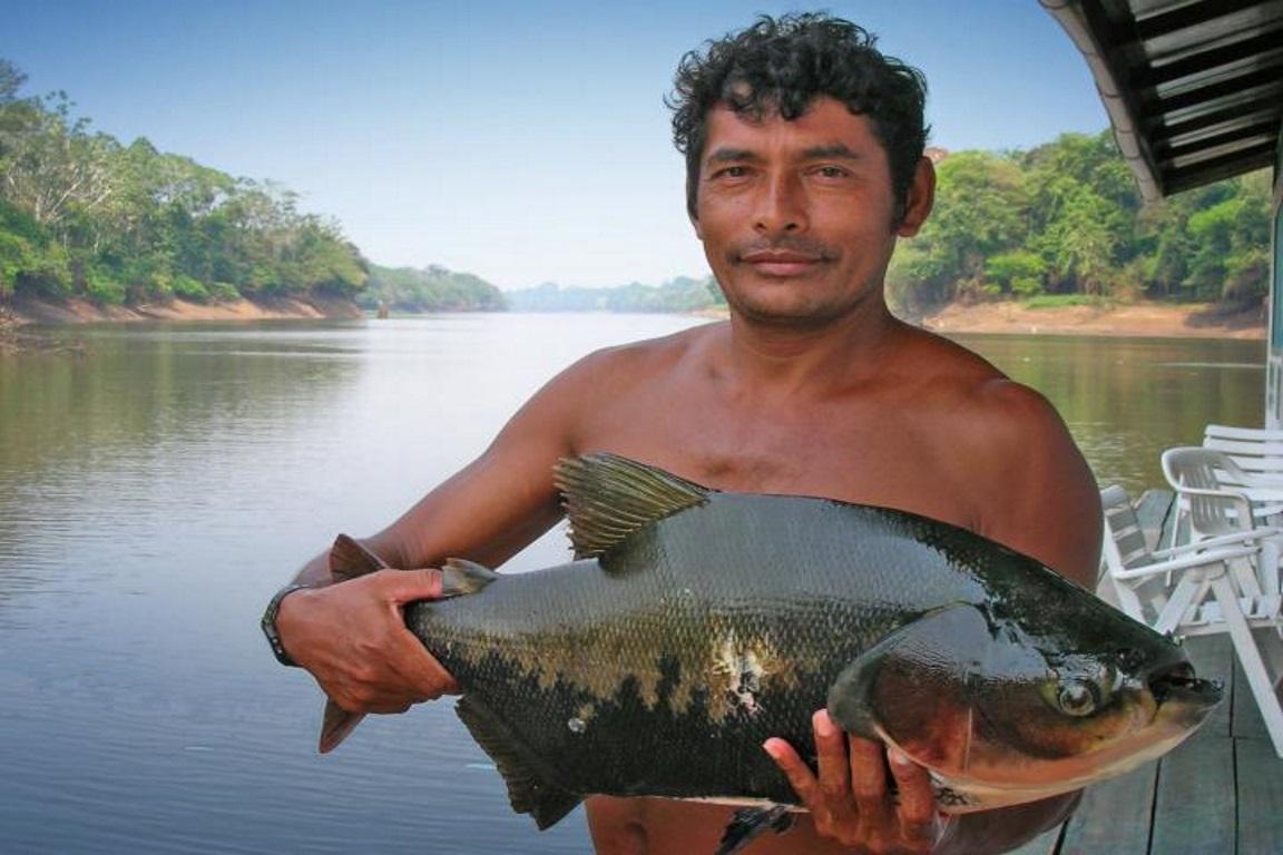 O desmatamento em várzeas na Amazônia prejudica a pesca de comunidades ribeirinhas, afetando a segurança alimentar e a renda das populações tradicionais. Foto:  Leandro Castello.