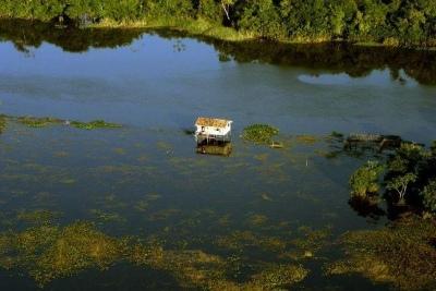 RESEX Verde Para Sempre, Porto de Moz - Pará, Brasil. Foto: Claudio/ISA.