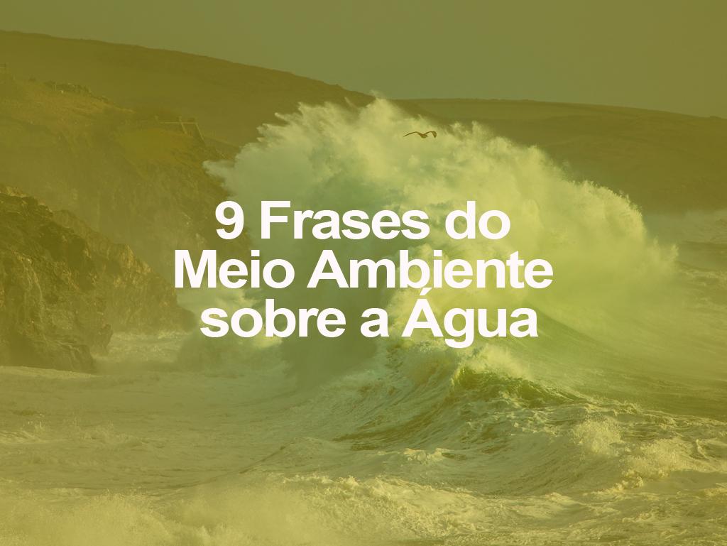 9 Frases Do Meio Ambiente Sobre A água Oeco
