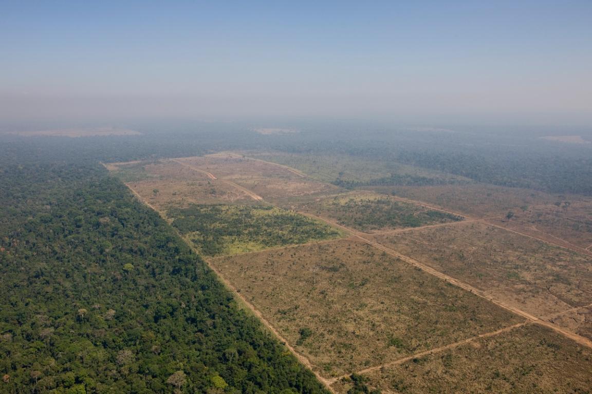 Brasil burla meta de Áreas Protegidas e põe em risco seu patrimônio ambiental