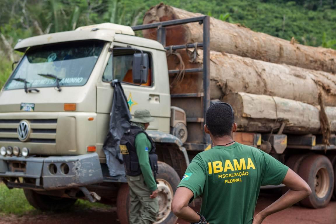 MPF recomenda troca de superintendente do Ibama no Pará