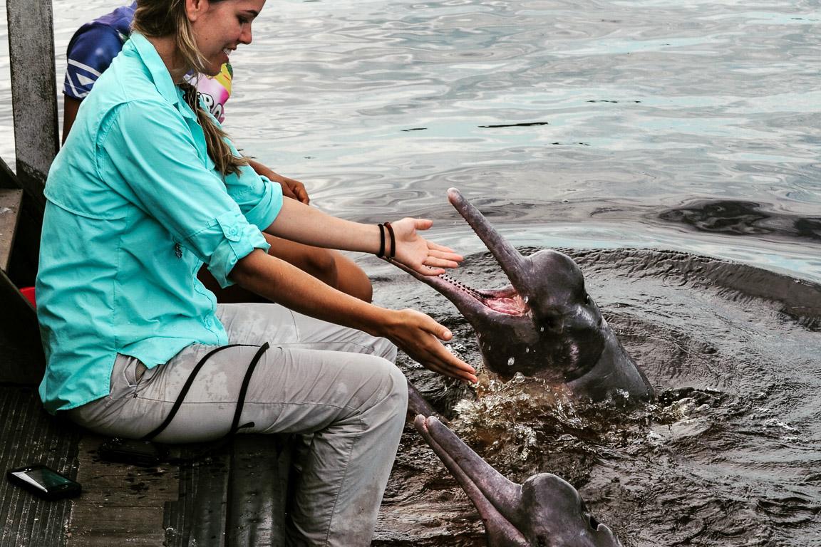 Exploração de animais silvestres pelo turismo é alvo do MPF no Amazonas