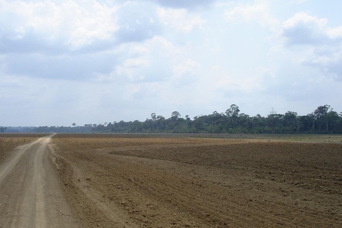 As fissuras da barreira de áreas protegidas