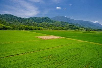 agricultura2 Foto Chan360 Flickr. - As fissuras da barreira de áreas protegidas