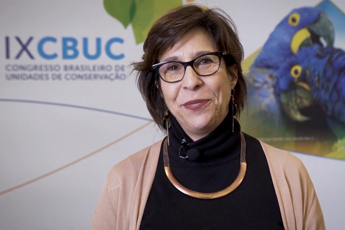 Vídeo: Investimento de impacto socioambiental, que bicho é esse? Por Célia Cruz