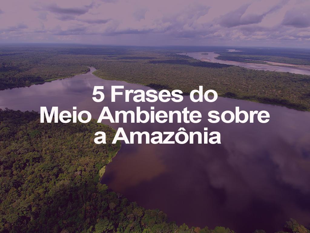 5 Frases Do Meio Ambiente Sobre A Amazônia Oeco