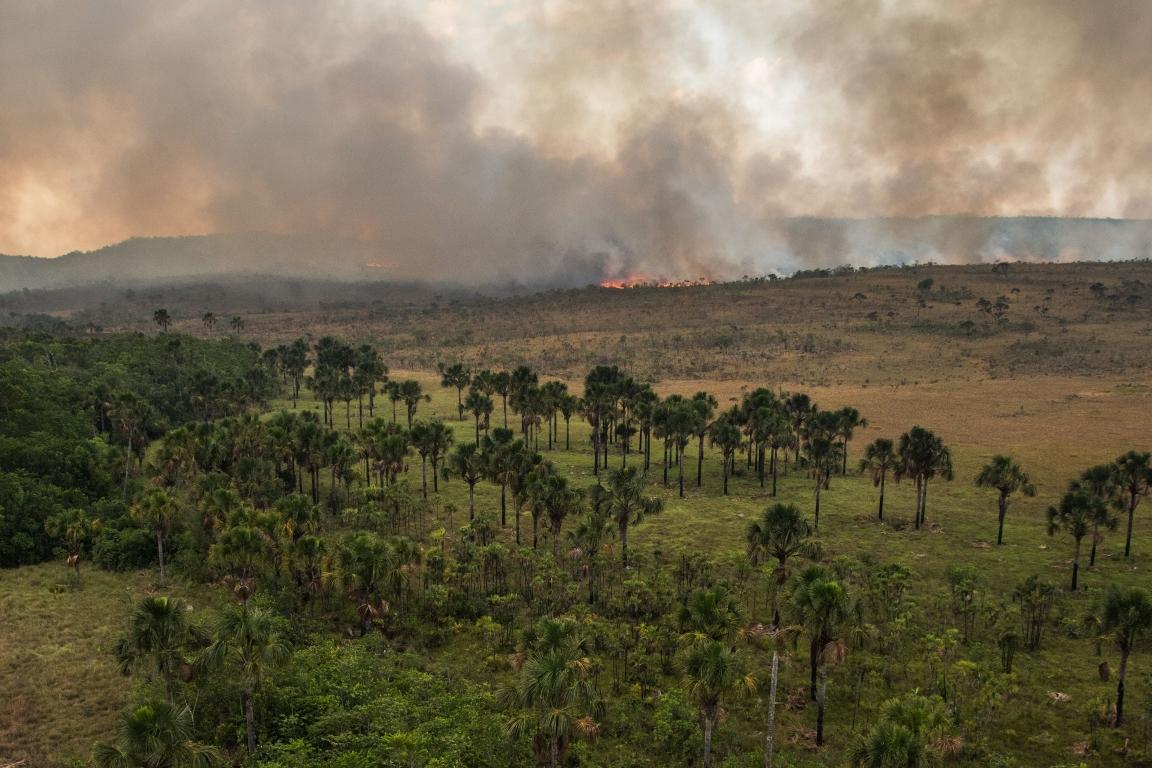 Existirá futuro para o Brasil sem o Cerrado?
