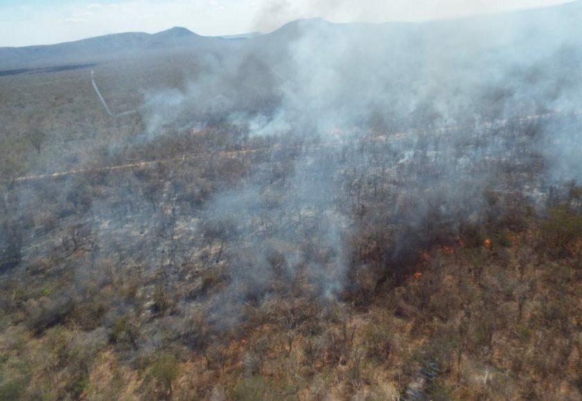 Incêndio foi controlado na quarta. Foto: Divulgação