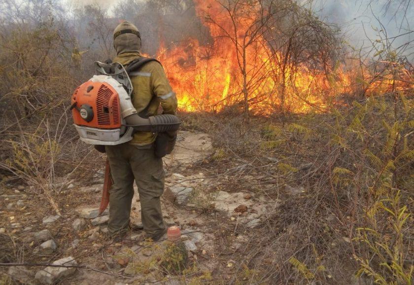 Brigadista combate fogo em Boqueirão da Onça.  Foto: Divulgação