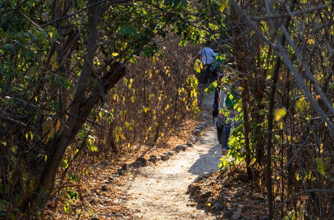 Uma das trilhas da reserva. Foto: Duda Menegassi.