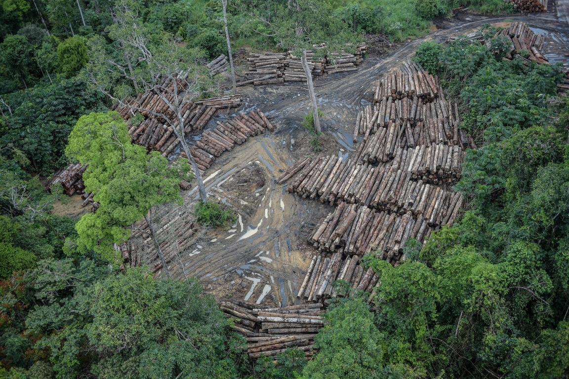 Desmatamento aumenta 14% na Amazônia, maior taxa em 9 anos