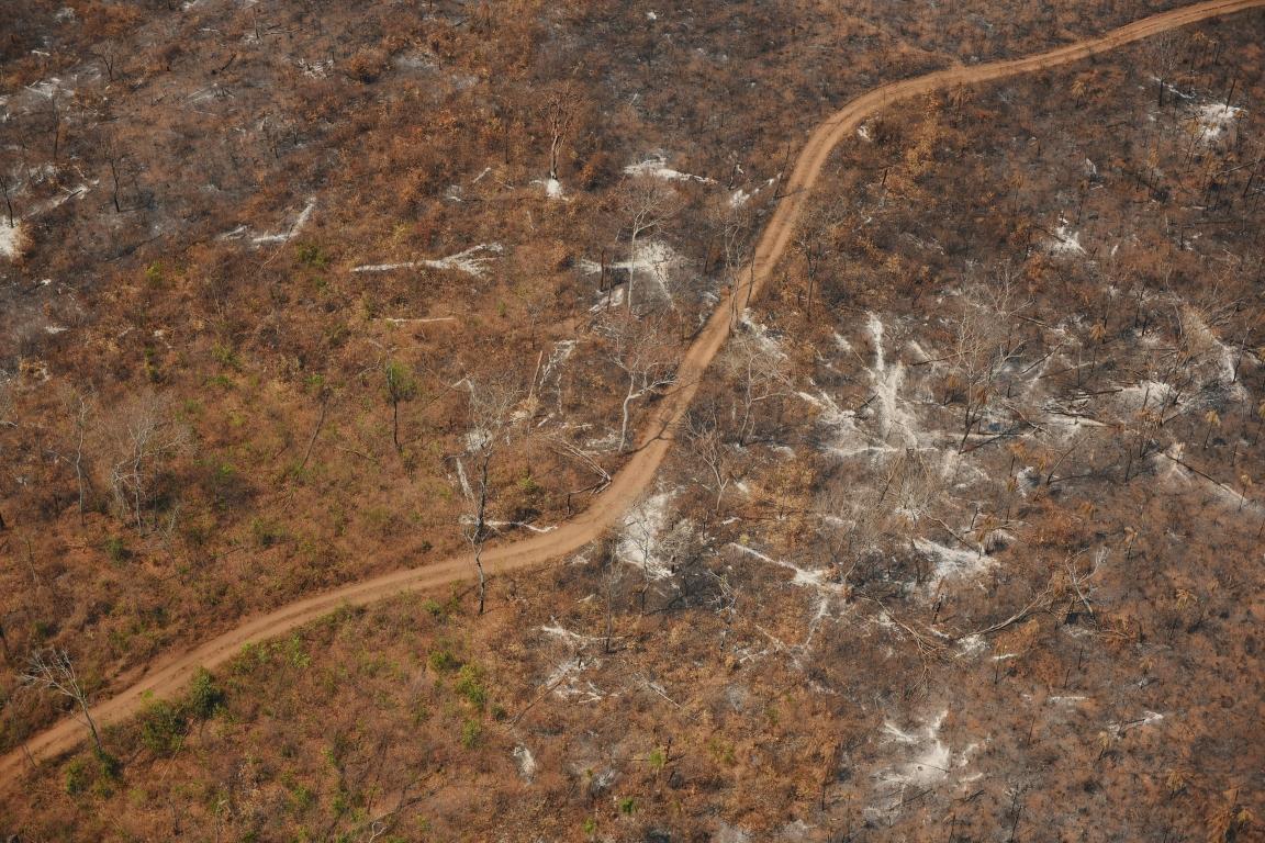 Áreas protegidas da Amazônia enfrentam quase 80 mil km de estradas irregulares