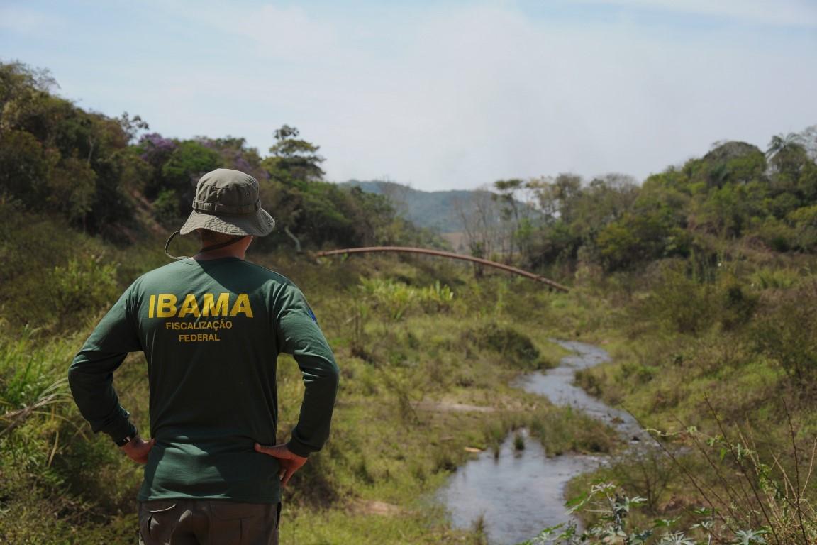 Cartas expõem racha no Ibama na Amazônia