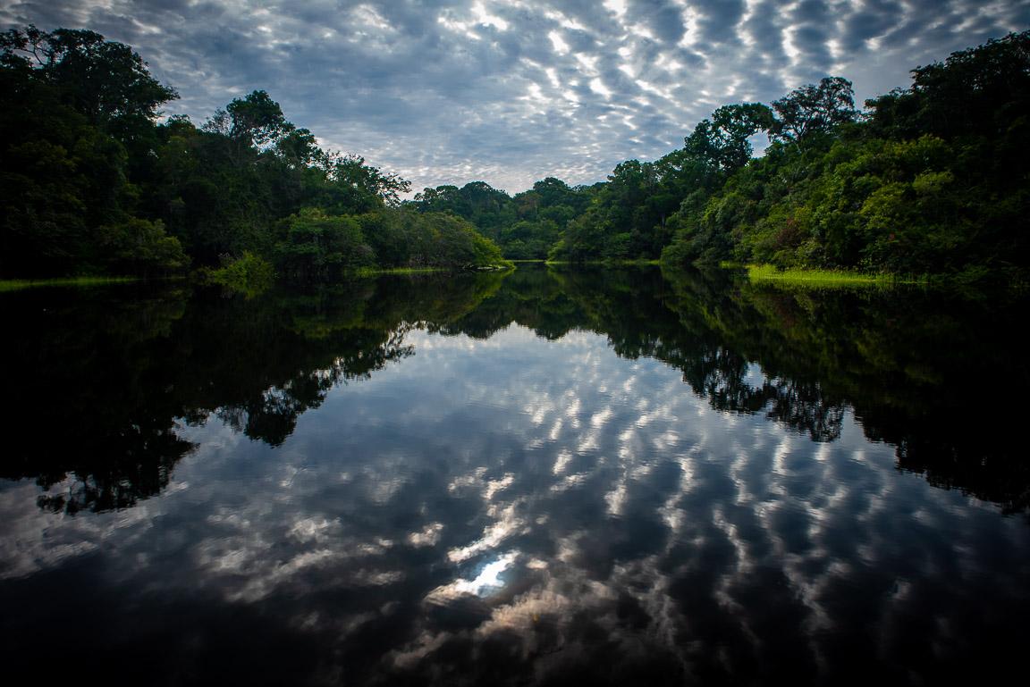 Governo quer criar hidrelétrica e abrir estradas em uma das regiões mais preservadas da Amazônia